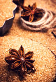 Cinnamon sticks and star anise on brown sugar macro. Christmas s Royalty Free Stock Images