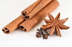 Cinnamon sticks, star anise and cloves (spices). Cinnamon, star anise and buds cloves on a white background Stock Image