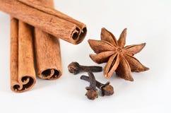 Cinnamon sticks, star anise and cloves (spices). Cinnamon, star anise and buds cloves on a white background Stock Photos