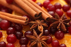 Cinnamon sticks, star anise, orange slice and cranberries Royalty Free Stock Images