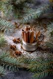 Cinnamon sticks and star anise spice Royalty Free Stock Photo