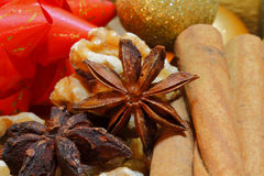 Cinnamon sticks and star anise Royalty Free Stock Photo