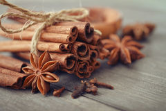 Cinnamon sticks and star anise Stock Images