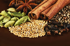 Cinnamon sticks, stars anise, cardamom, clove, coriander and mus Royalty Free Stock Images
