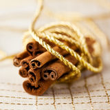 Cinnamon sticks tied with a golden string Stock Images