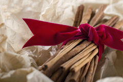 Cinnamon sticks tied with a red ribbon Stock Image