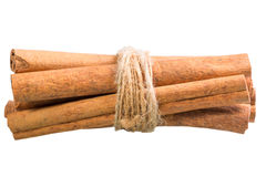 Cinnamon sticks tied with a rope Stock Photography