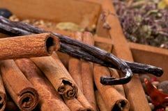 Cinnamon Sticks and Vanilla Pods Royalty Free Stock Photography