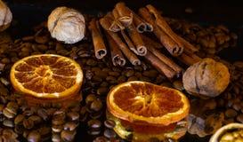 cinnamon sticks,walnuts,candied fruit Stock Image