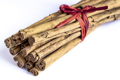 Cinnamon. Sticks on white background Stock Photography