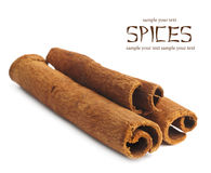 Cinnamon sticks on white background Royalty Free Stock Photography