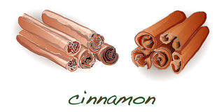 Cinnamon sticks on white background. Vector illustration Royalty Free Stock Photos