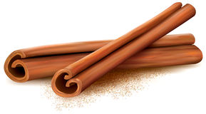 Cinnamon. Sticks on white background. Vector illustrtion Stock Images