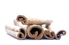 Cinnamon sticks. Whole cinnamon sticks isolated on white background, macro shot Royalty Free Stock Images