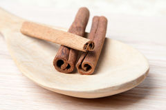 Cinnamon sticks on a wooden spoon Royalty Free Stock Photo