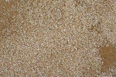 Cinnamon Sugar Granules Close View Stock Photo
