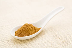 Cinnamon (sweet)  bark powder Stock Photos