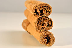 Cinnamon to use as spice or as  medicine Stock Photography