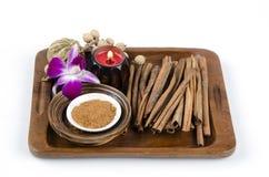 Cinnamon Tree (Cinnamomum verum J.Presl). Herbs Thailand Stock Image