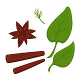 Cinnamon in tube and star shapes and fresh greenery Royalty Free Stock Photography