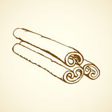 Cinnamon. Vector drawing Royalty Free Stock Image