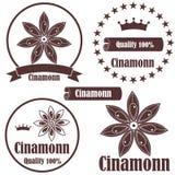 Cinnamon. Vector illustration (EPS 10 Royalty Free Stock Photos