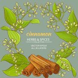 Cinnamon vector pattern. Cinnamon branches vector frame on color background Stock Images