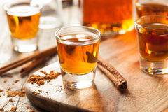 Cinnamon Whiskey Bourbon in a Shot Glass. Ready to Drink Royalty Free Stock Photo