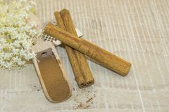 Cinnamon and white fragrant flower. Cinnamon sticks, cinnamon powder in a wooden spoon and white scented flower on a wooden base Stock Photography