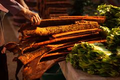 Cinnamon wood and Betle at the local market in the morning. Pakse, Champasak, Laos. Warm tone. Beautiful light. Shallow dept of royalty free stock photo