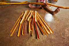 Cinnamon workshop. Man is processing branches of cinnamon in small workshop in  Sri Lanka Royalty Free Stock Image