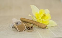 Cinnamon and yellow fragrant flower. Cinnamon sticks, cinnamon powder in a wooden spoon and yellow scented flower on a wooden base Royalty Free Stock Image