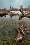 Cinnoberfärg vinter för vatten för sjöinloggning Arkivfoton