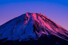 Cinnoberfärgtoppmöte av Mount Fuji Fotografering för Bildbyråer