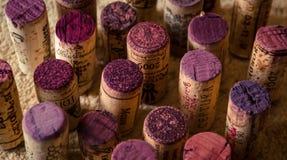 Cinqüênta máscaras do vinho Fotos de Stock