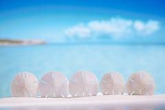 Cinq étoiles de mer d'étoiles sur le sable blanc échouent avec l'océan, le ciel et le Se Photographie stock libre de droits