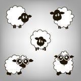 Cinq agneaux Images stock