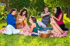 Cinq amis de sourire ayant des boissons dans le parc Photographie stock libre de droits