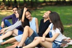 Cinq amis heureux se reposant la nature, en riant et la causerie Photographie stock libre de droits