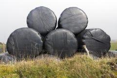 Cinq balles d'ensilage Image libre de droits