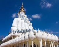 Cinq blanc Bouddha Photo libre de droits