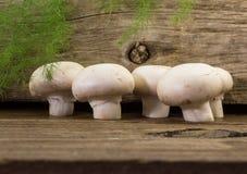 Cinq champignons sur le fond en bois Images stock