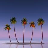Cinq cocotiers Photos libres de droits