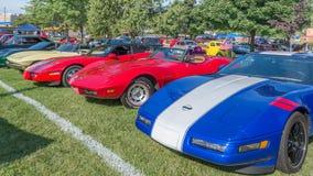 Cinq Corvette à la croisière de rêve de Woodward Photos libres de droits