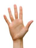 Cinq doigts photo stock