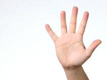 Cinq doigts photos libres de droits