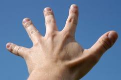 Cinq doigts photo libre de droits
