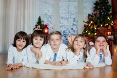 Cinq enfants, frères, soeurs, enfants de mêmes parents et amis mignons, havi Photo stock