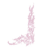 Cinq fleurs et lames. illustration stock