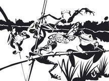 Cinq grenouilles autour de leur étang Image libre de droits